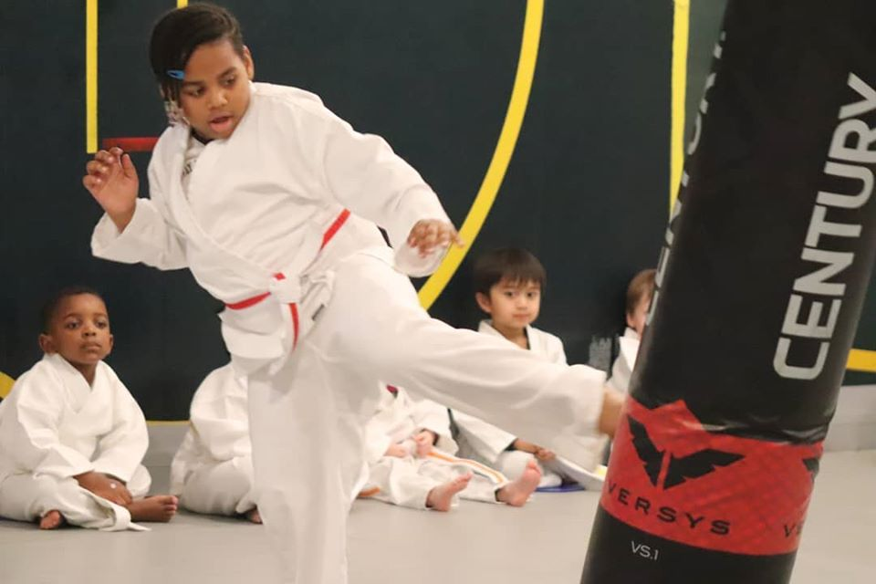 Martial Arts ages 3 to 5
